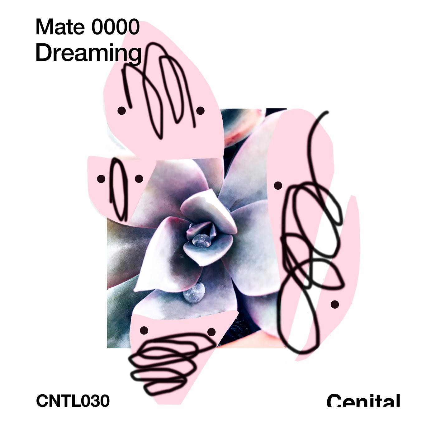 Mate 0000